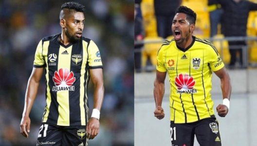 attitude of roy krishna