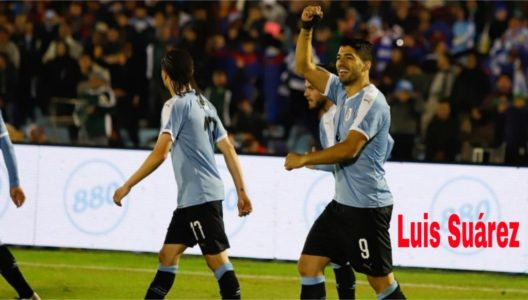 luis suárez in joy after scoring a goal against ecuador
