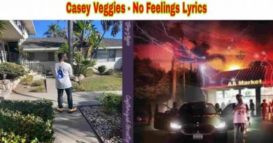 casey veggies no fellings lyrics from cg5 2021 album