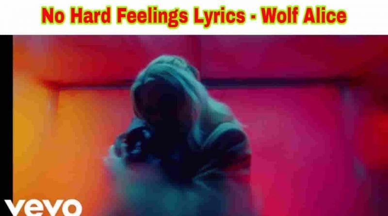 no hard feelings lyrics wolf alice