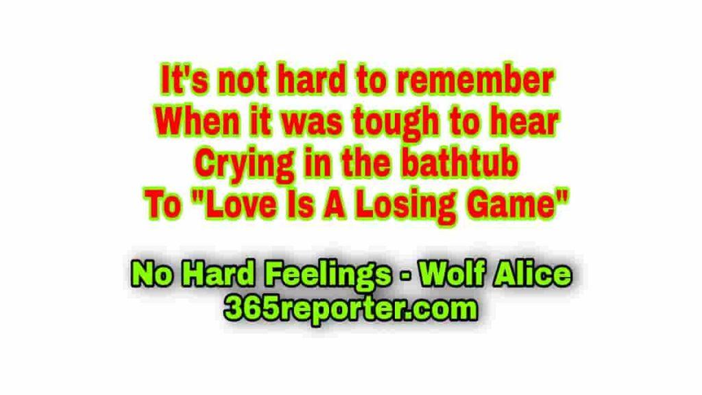 no hard feelings status wolf alice